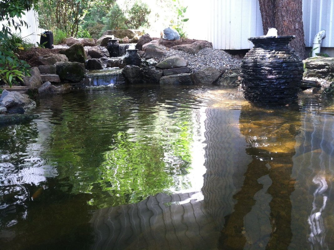 fish pond installations and construction pond contractor morris